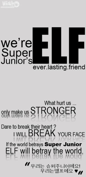 ELF QUOTES/101003] #TellMe After You knew Super Junior ...